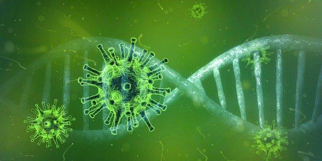 コロナウイルス感染者による日記/報告/動画まとめ(症状・経緯など)